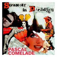 Stranger in Paradigm