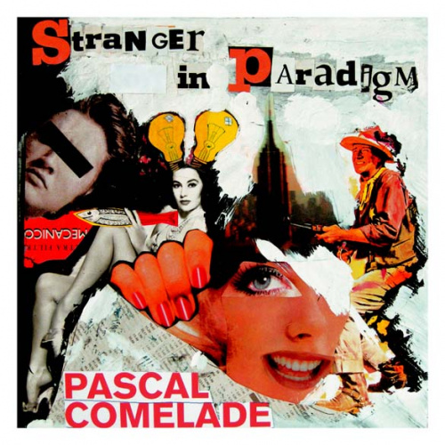 Stranger in Paradigm